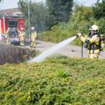Koendersweg ruigtebrand